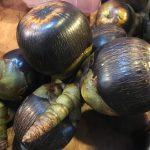 キャメロンハイランドで出会ったフルーツ「シーココナッツ」ってなんだ?