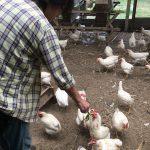 Happy Egg Hunting 〜TKGで自然の力を味わうツアー〜開催レポート