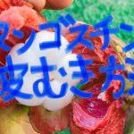 【簡単5秒】マンゴスチンの食べ方(ナイフ不要)