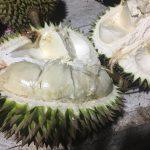 【厳選】マレーシアの美味フルーツ7選。もう全部食べてみた?