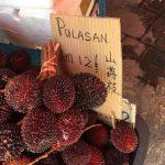 プラサン(Pulasan)というフルーツの味・栽培・栄養価・食べ方のコツまで伝授します!