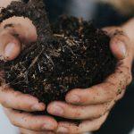 韓国式自然農法の理論・農業における実践方針