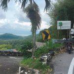 オーガニックのドリアン農園:マレーシアはペナンのBao Shen(バオシェン)Durian Farm