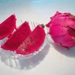 ドラゴンフルーツの栽培方法